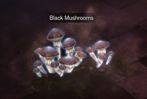 Black Mushroom Screen Shot